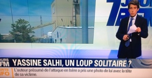 loup solitaire